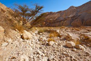 Каньон Иудейской пустыни