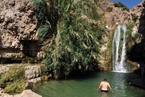 Оазис Эйн-Геди в пустыне