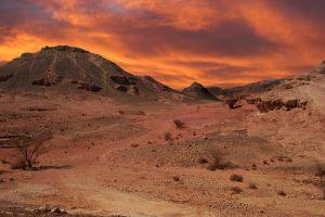 Прогулка по пустыне Израиля